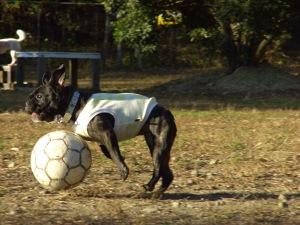 サッカー、楽しぃ~!!